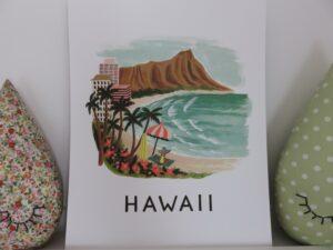 Rifle Paper Co hawaii