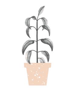 Carte Green Plant Audrey Jeanne