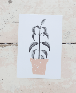 carte posatle green plant Audrey Jeanne