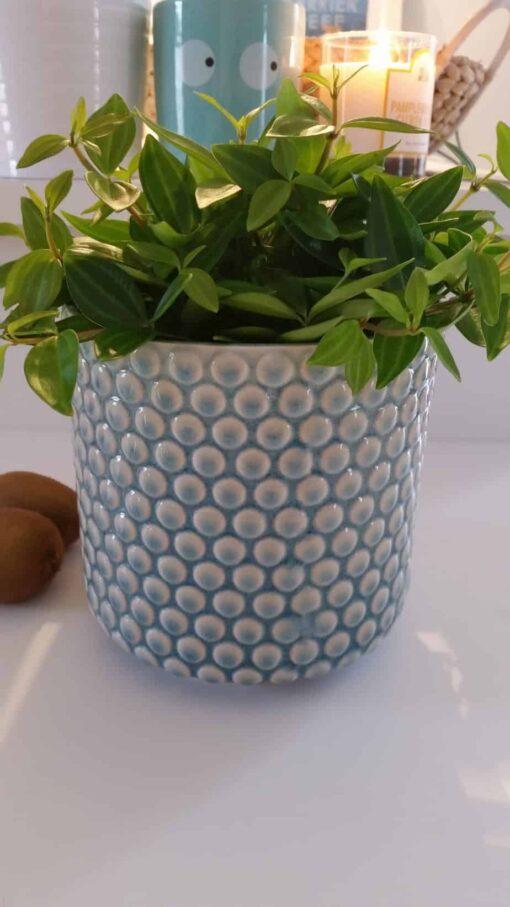 Cache pot Bloomingville Bulles turquoise
