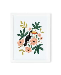 Affiche Toucan Rifle Paper Co
