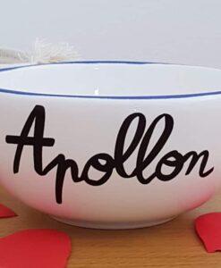 Bol breton Apollon Pied de Poule