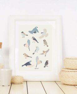 Affiche Oiseaux Minimel