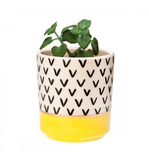 Set de 3 Mini pots pour plantes