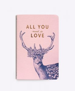 Carnet All you need is love Editions du Paon