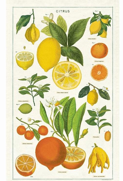 Torchon de cuisine Citrons Cavallini
