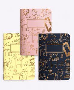 Trio de petits carnets chat Les Editions du Paon
