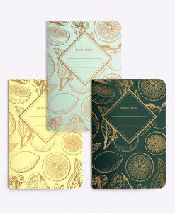 Trio de petits carnets Lenomade Les Editions du Paon