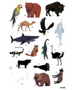 Poster géant + 76 stickers – Animaux du monde