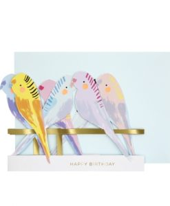 Carte anniversaire accordéon Oiseaux Meri Meri