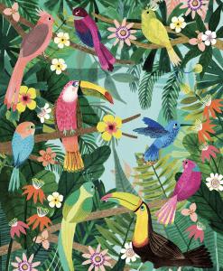 Poster Oiseaux Tropicaux